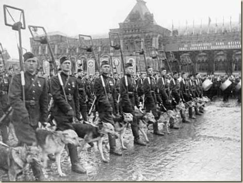 ВЕО на параде 9 мая 1945 год